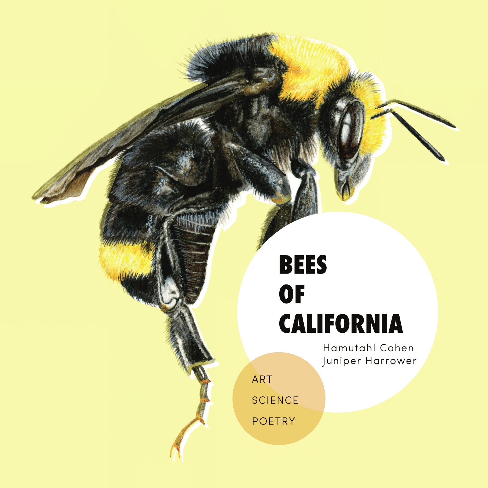 cover of the bees of california